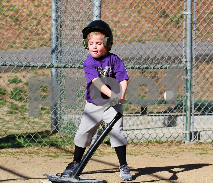 Baseball Vista