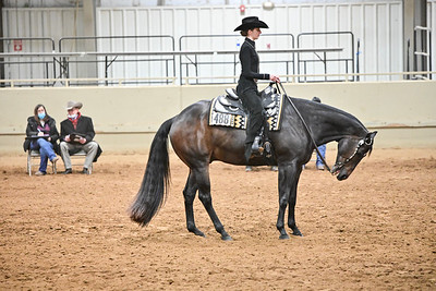 Novis Youth Horsemanship