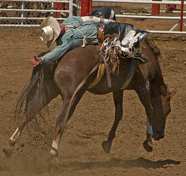 COOMBS RODEO-2009-3546A.jpg