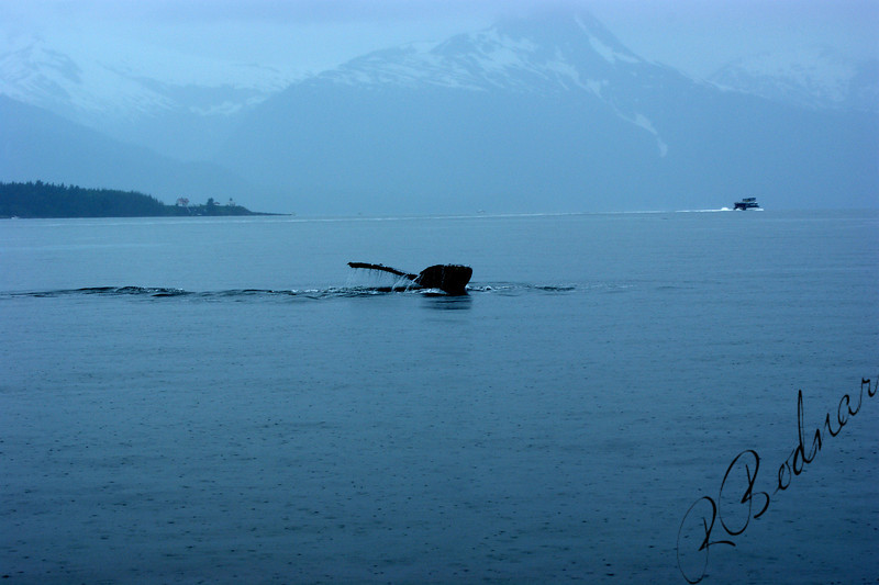 Alaska 7-24-2008