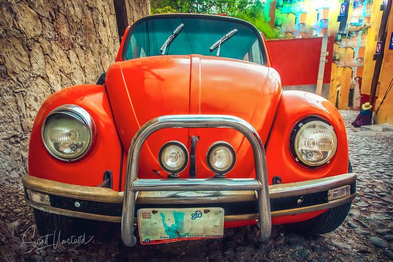 Orange Beetleqrt-2.jpg