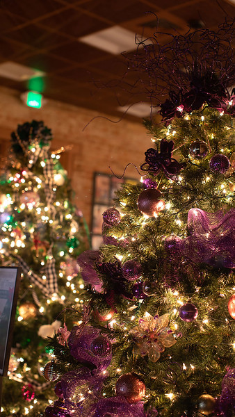 2019 Tuomey Foundation Festival of Trees