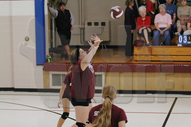 A1 Volleyball