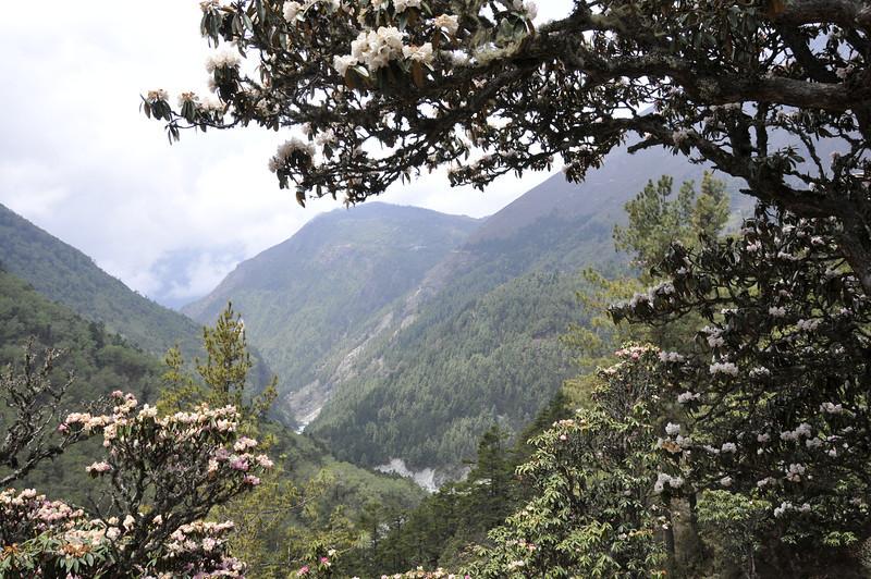 080517 2871 Nepal - Everest Region - 7 days 120 kms trek to 5000 meters _E _I ~R ~L.JPG