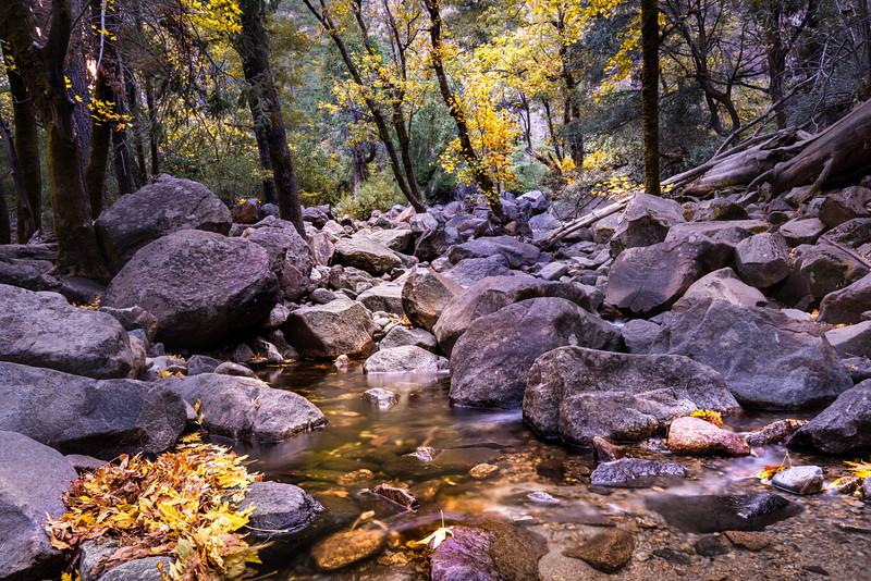 Fall Color Below Yosemite Falls