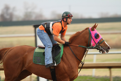 Lone Star Park 2011 -workouts 3-18