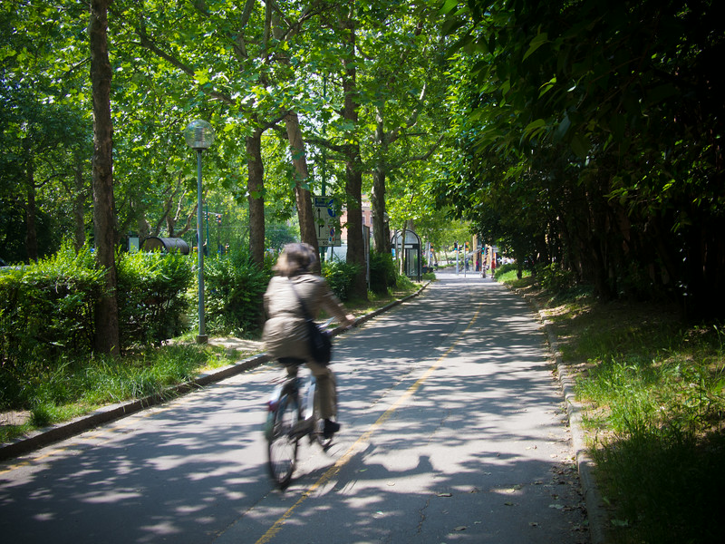 bicycle path 2.jpg