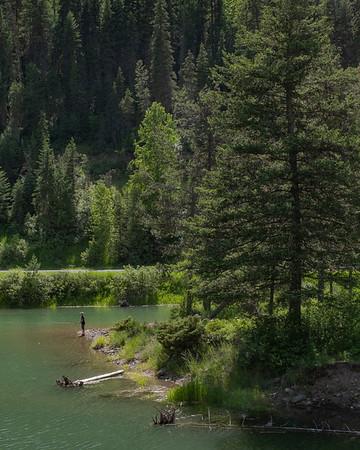 Montana 2021