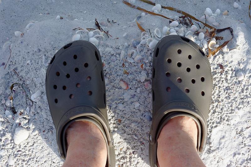 Shell Crocs