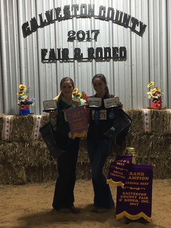 Galveston County Fair 2017