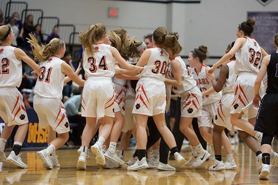 Wheaton Warrenville South Girls Basketball Sectional