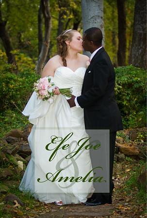 Amelia and Joe's Wedding Book
