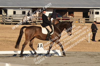 141130 USEA Horse Trial