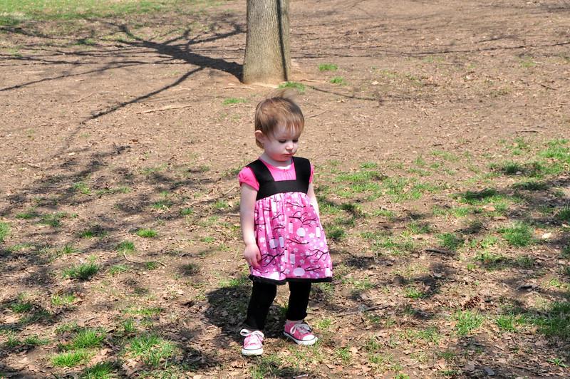 Cherry Blossoms 2014 054.jpg