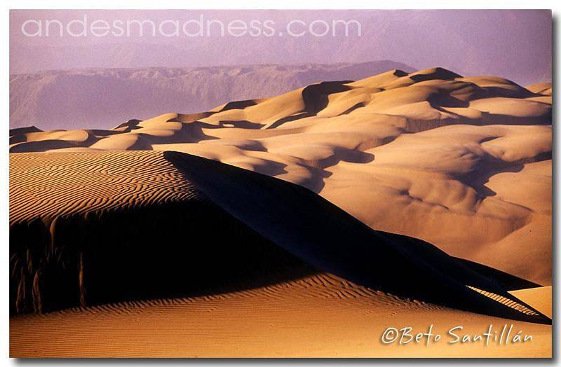 ECO 4x4 2 TRIP desert 2007 A1++.jpg