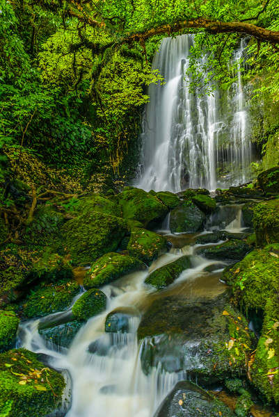 NZ-MATAI FALLS-11-Edit-Edit.jpg