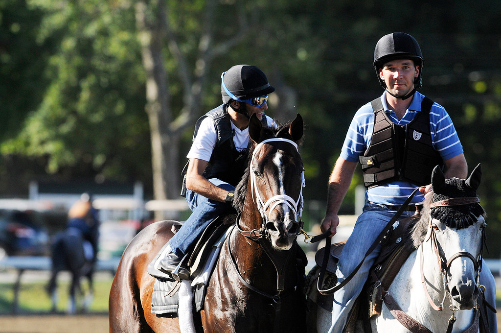 . Johnny Velazquez breezed Verrazano on Saratoga Race Course Sunday morning, trained by Todd Pletcher, set to run in Travers Stakes.Photo Erica Miller/The Saratogian 8/11/13 spt_Verrazano4