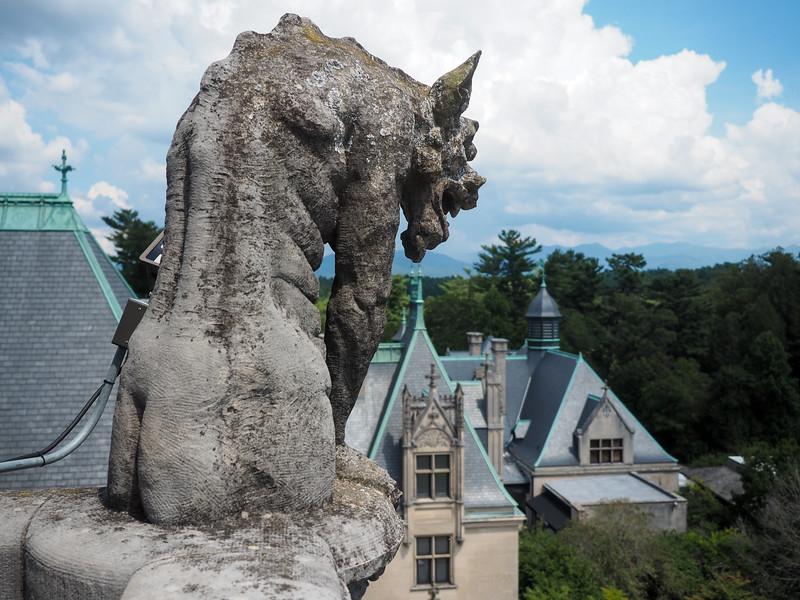 Gargoyle at the Biltmore