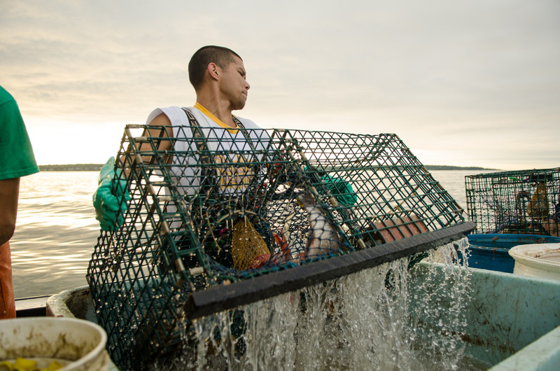 51. Lobstering, Casco Bay, Maine with Jim Buxton, August 2013.