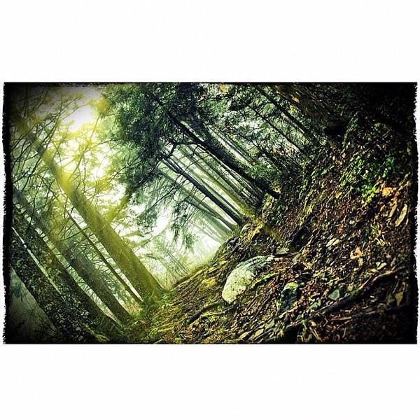 2011-12-14_1323838163.jpg