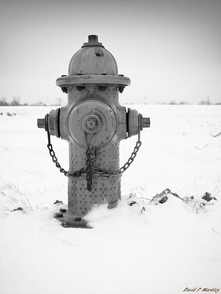 Frigid Fire Hydrant