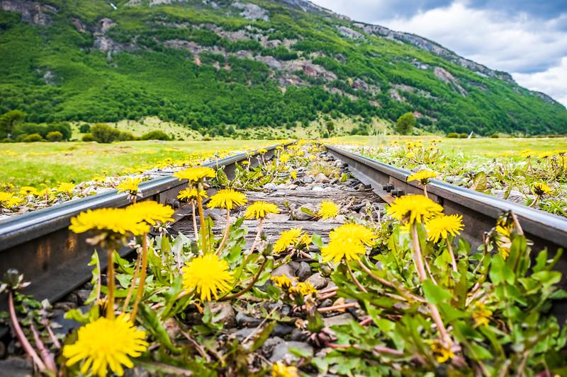 KMP-Ushuaia-32426.jpg