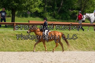 Beginner Rider Under Saddle