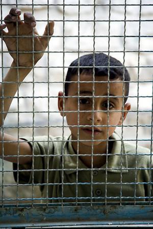 Palestine 2008