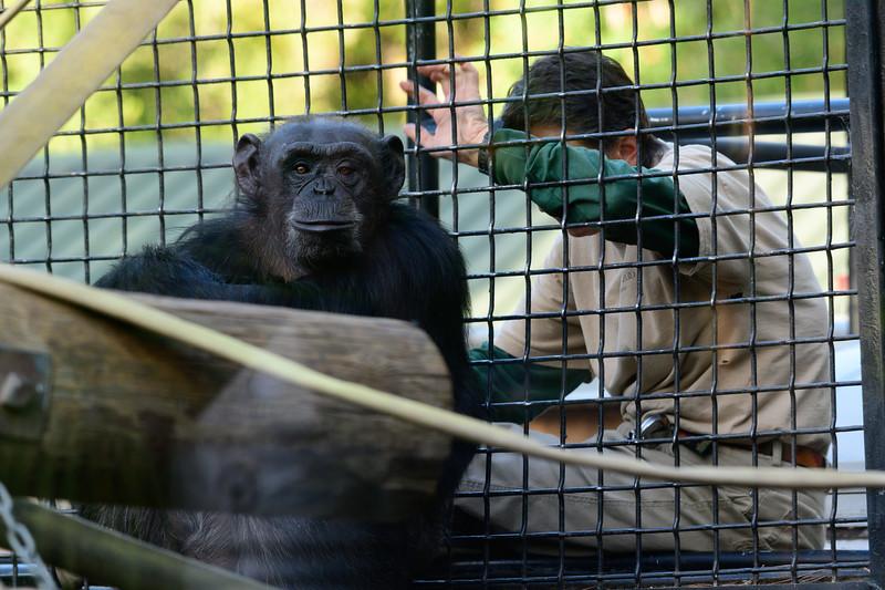 Oakland Zoo-71151-8.jpg