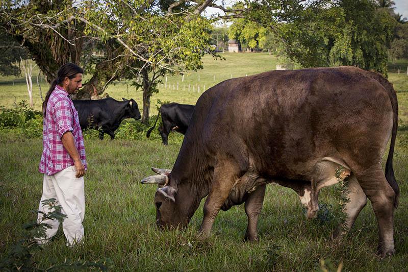 Nabitunich Belize farming 14.jpg
