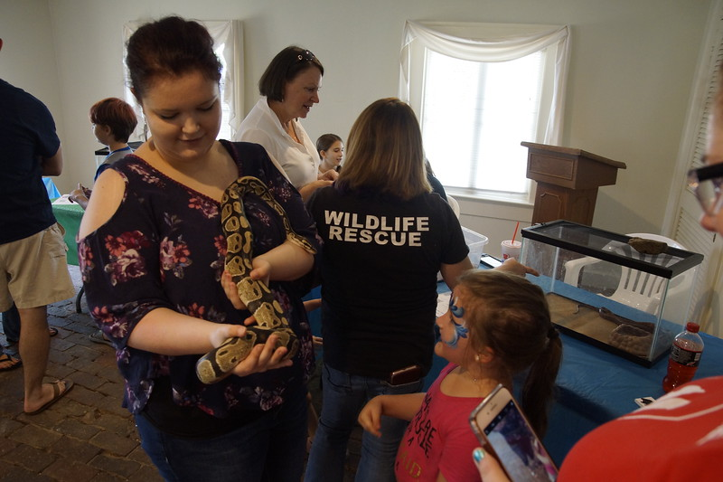 Pine_Tree_Hill_Wildlife_Rescue (95).JPG