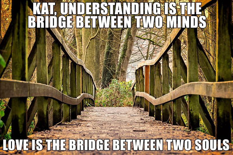 Bridge Minds.jpg