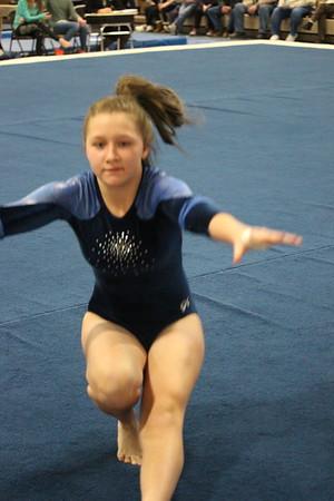 DC Gymnastics 2-3-17