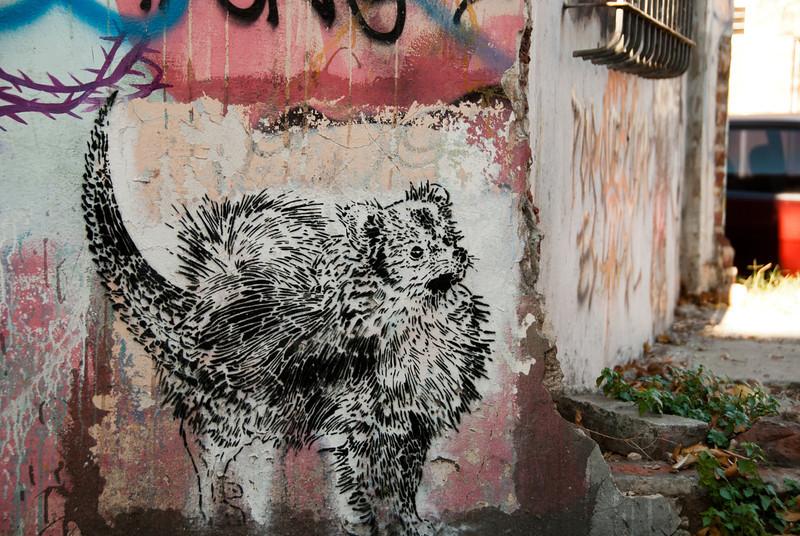 Buenos Aires Graffiti 233.jpg