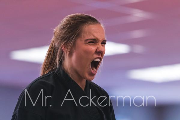 Mackensi Emory Seminar December 2018