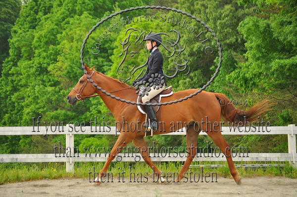 Piedmont Classic Show May 10th, 2014