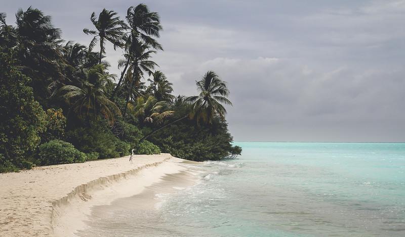 SriLanka_32.jpg