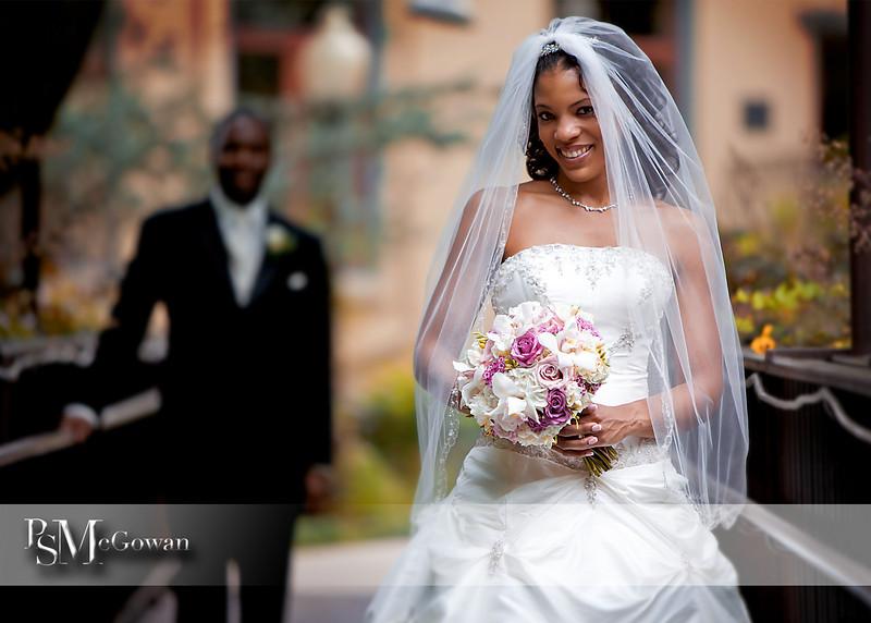 Bride on Bride.jpg