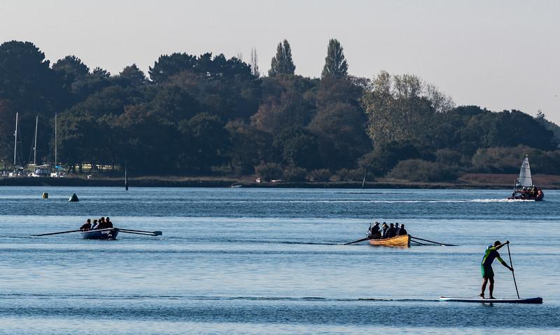 Oars & Paddle-1.jpg