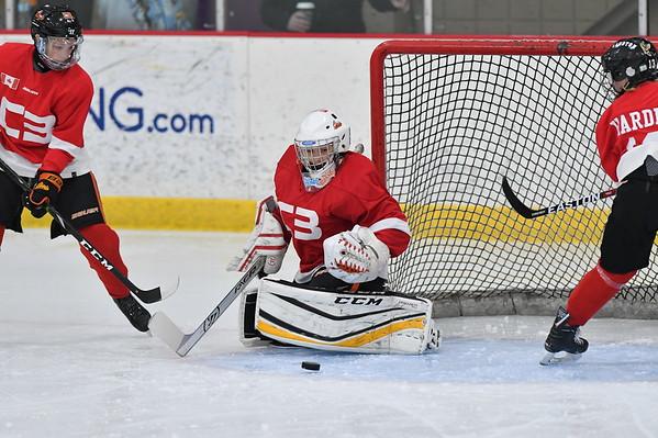 08 AAA C3 Hockey