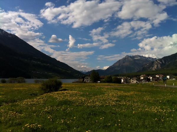 field, village mountain near Mals.JPG