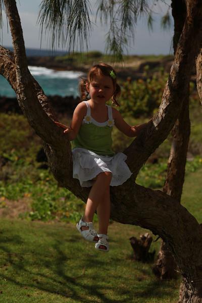 Kauai_D4_AM 205.jpg