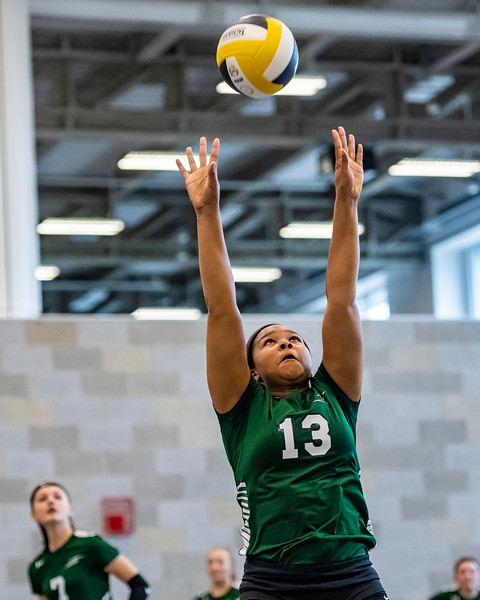 2018-Stvenson_Lady's_Volleyball-25.jpg