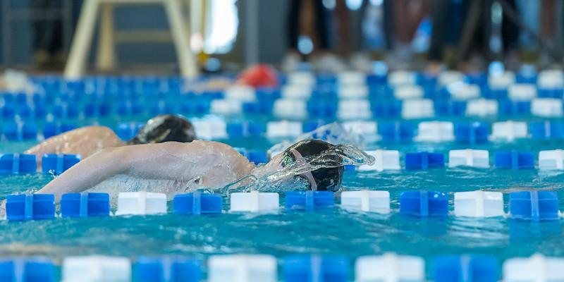 2018_KSMetz_Feb17_SHS Swimming_ State Finals_NIKON D5_5546.jpg