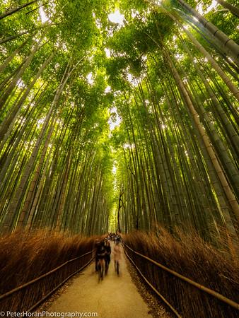 Around The World: Travel Photography
