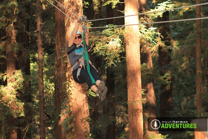 redwood_zip_1473459961370.jpg