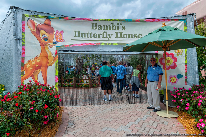 Bambi's Butterfly House<br /> Bambi's Butterfly House - Flower & Garden Festival 2012 - Epcot