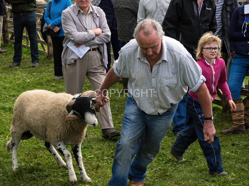 Moorcock annual country show, Wensleydale, N. Yorkshire.2016