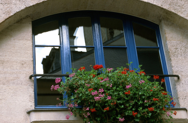 Morning In Arles