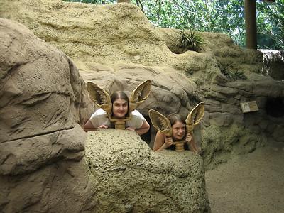 Bronx Zoo - July 29, 2006